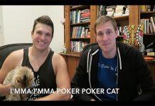 Poker Cat Rap