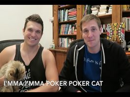 Poker Cat Rap