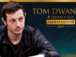 Том_Дван_стал_вторым амбассадором Triton Poker