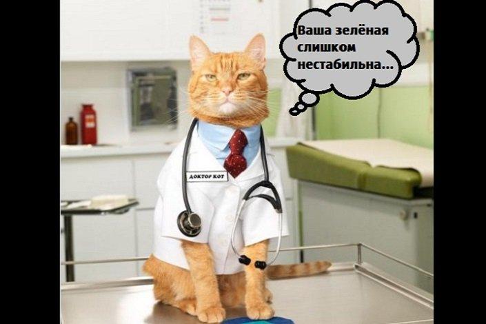 шутка про зеленую линию с котиком