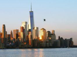 законопроект покер Нью-Йорк
